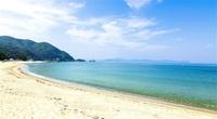 海水浴場の波とにぎわい(県内一円) 歓声とはじける笑顔 ふくい音風景(3)