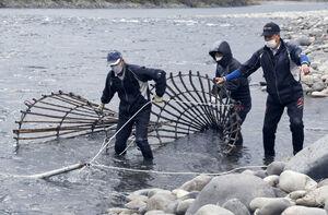 アラレガコの伝統エバ漁始…