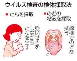 ウイルス検査の検体採取法