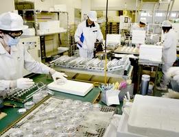 眼鏡用レンズの製造が進むアサヒオプティカルの本社工場。増産が続き、人員確保に苦心する=7月2日、福井県鯖江市下河端町