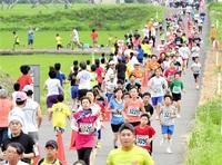 南越前 早朝マラソン22日号砲 花ハスの里3244人いざ 「ザ・たっち」5キロ出走