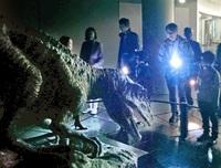 「夜の恐竜博」検討 県、23年夏の新装見据え