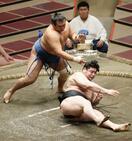 大相撲、千代の国が3度目十両V