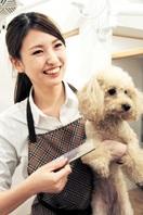 初代美人職人グランプリに福井女性