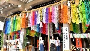 5万羽の折り鶴が彩りよく飾られた社殿=7月9日、福井県福井市大手3丁目の佐佳枝廼社