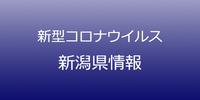新潟県で33人コロナ感染、クラスター発生の保育園関連など 4月17日発表