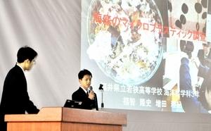 小浜湾でのマイクロプラスチック調査の結果を発表する若狭高生=11月9日、福井県小浜市の同校
