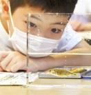 イトヨの特徴観察壁飾り作りに挑戦 大野で児童2…