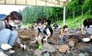 化石発掘体験再開、子どもたち歓声