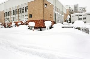 1メートルを超す積雪がある仁愛女子高の北門前=8日午前10時10分ごろ、福井市宝永4丁目