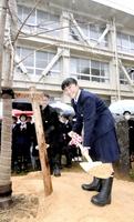 学校の中庭にしだれ桜を植樹する生徒ら=22日、福井県鯖江市東陽中