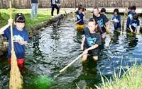 スポ少の児童ら中野清水を清掃 大野、30人参加