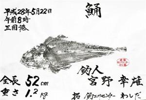 宮野さんの魚拓
