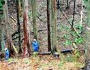 森林組合と森林所有者が対立