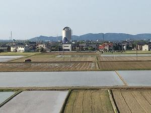27・7度の今年最高気温を記録した福井県福井市内=5月5日