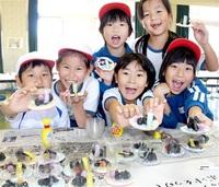 勝山市全小中でNIE 持続発展教育「ESD」一環 ふるさとへの学び深める みんなの新聞NIE