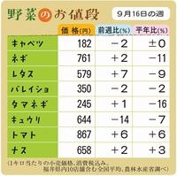 野菜のお値段 9月16日の週