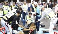町民240人訓練 水防、避難学ぶ おおい