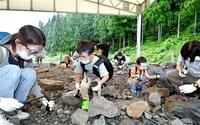化石発掘体験 歓声戻る 県立恐竜博20年 野外博営業が再開