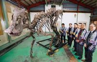 「むかわ竜」の全身骨格を復元