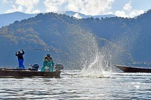 湖面を竹で打ち、魚追い込む伝統漁