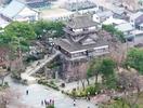 丸岡城の天守、最古でない可能性