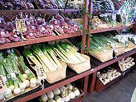 坂井地区の若手農業家が育てた新鮮野菜がずらり