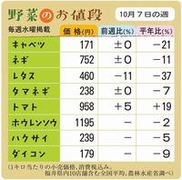 野菜のお値段 10月7日の週