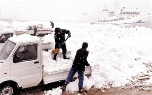 臨時に設けられた雪捨て場に雪を持ち込む住民=11日午後3時55分ごろ、福井県小浜市川崎3丁目
