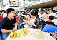 家族連れ、福井県産メロンに舌鼓