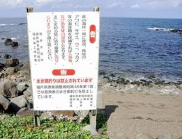 まき餌釣り禁止を呼び掛ける看板=10月14日、福井県坂井市三国町安島