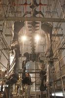 組み上げ作業が進むブラキオサウルスの全身骨格=2日、勝山市の福井県立恐竜博物館
