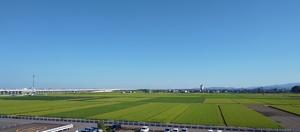 青空が広がる福井県福井市内=8月5日午前7時35分ごろ