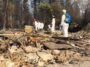 米加州山火事、犠牲者82人に