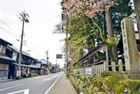 宙浮く劔神社周辺整備 越前町 観光で活性化 構想策定したまま 議論4年、住民「一歩踏み出して」