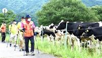 陸軍旧跡 歩いて学ぶ 大野・六呂師高原で催し 愛好者22人、ポール手に汗