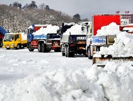 排雪を運び込むトラックで行列ができた足羽川河川敷の雪捨て場=12日午前8時55分ごろ、福井市有楽町