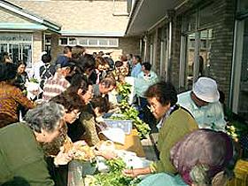 無農薬新鮮野菜を市価より安い値段で販売