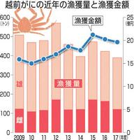 越前がにの近年の漁獲量と漁獲金額