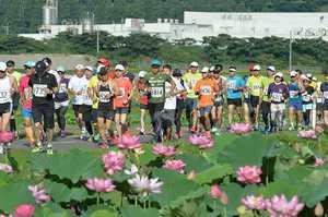 花ハスが咲き誇る里を駆け抜ける10キロコースのランナー=24日午前7時25分ごろ、福井県南越前町堂宮
