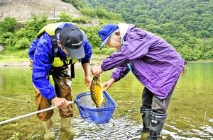刺し網に掛かったコクチバスを回収する漁協組合員ら=7日、福井県大野市長野の九頭竜ダム