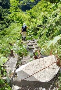 大野・仏御前の滝 雪崩被害の復旧進まず開放困難