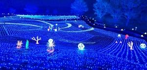 幻想的に輝く光で太古の地球を表現したジオ・イルミネーション=7月9日夜、福井県勝山市のスキージャム勝山