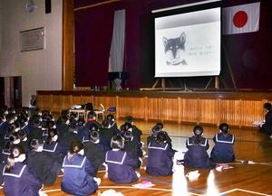命の大切さを考える道徳の授業で、プロジェクターに映し出された絵本「赤い首輪」を見る生徒=12月20日、福井県鯖江市