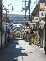 6月1日からの営業再開が決まった歓楽街「飛田新地」。4月3日から休業している=28日午後、大阪市