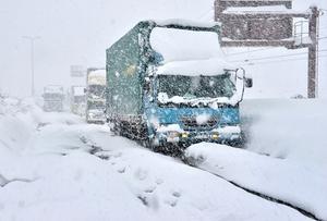 国道8号が渋滞となり、長時間待機を強いられるトラックの列=6日午前10時10分ごろ、福井県坂井市丸岡町今福