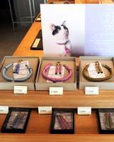 京都市の数珠店と共同開発したお守りにもなる猫の首輪と飼い主向けのピアス=東京都墨田区