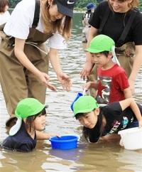 おっきいシジミ採れた 美浜・久々子湖 親子80人が体験