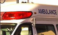 街路樹に衝突、軽乗用車の母娘死亡