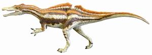 スピノサウルス科の歯、勝山で発掘